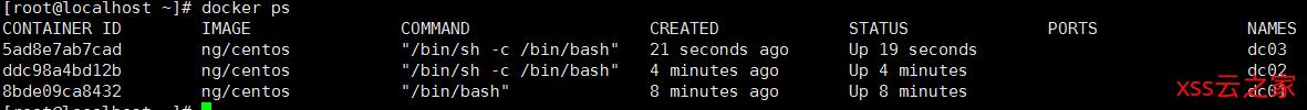 Docker系列-第五篇Docker容器数据卷